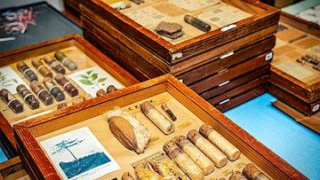 Boîtes pédagogiques de l'Institut colonial et agricole de Nancy conservées au Jardin botanique Jean-Marie Pelt